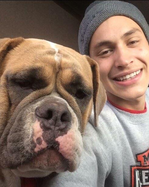 Lost dog Rufus 2